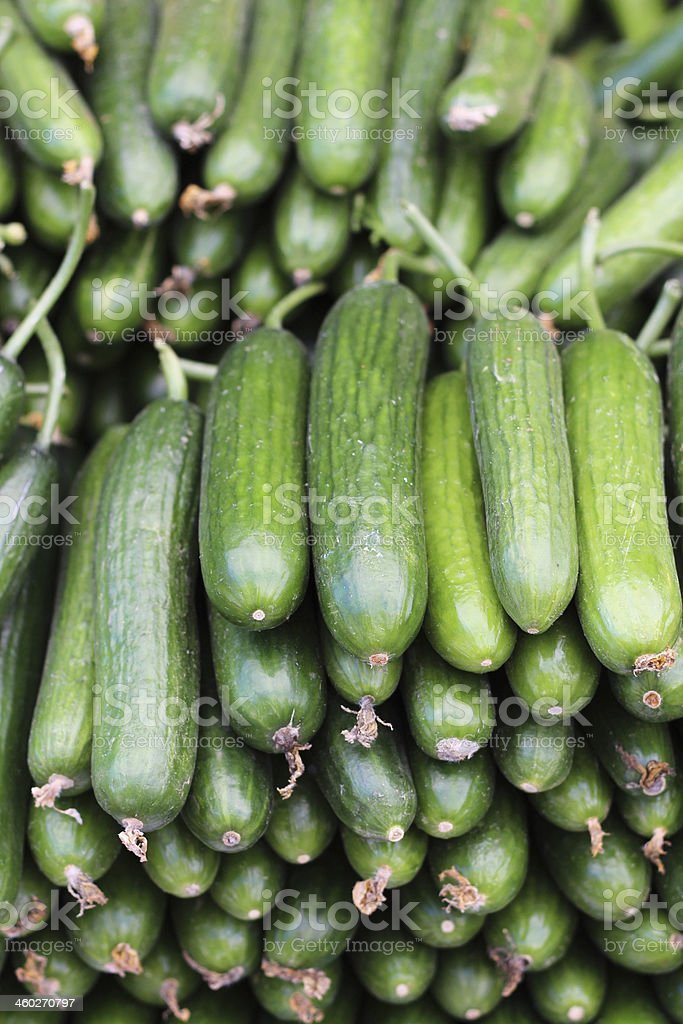 Cucumbers Background royalty-free stock photo