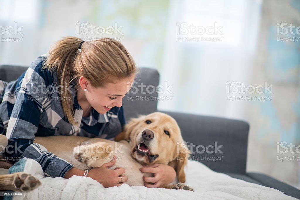 Cuddling Together on the Couch stock photo
