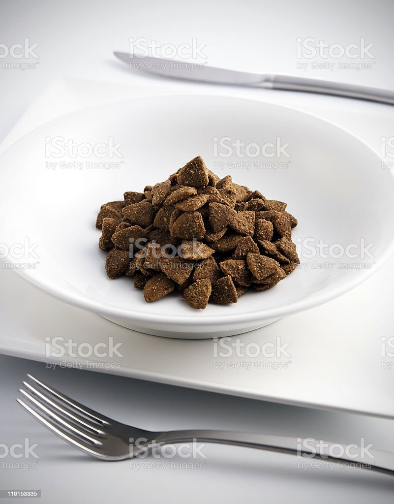 Cuisine for pets royalty-free stock photo