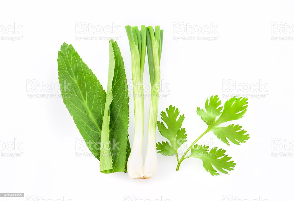 Culantro , Parsley and Spring onion isolated on white background stock photo