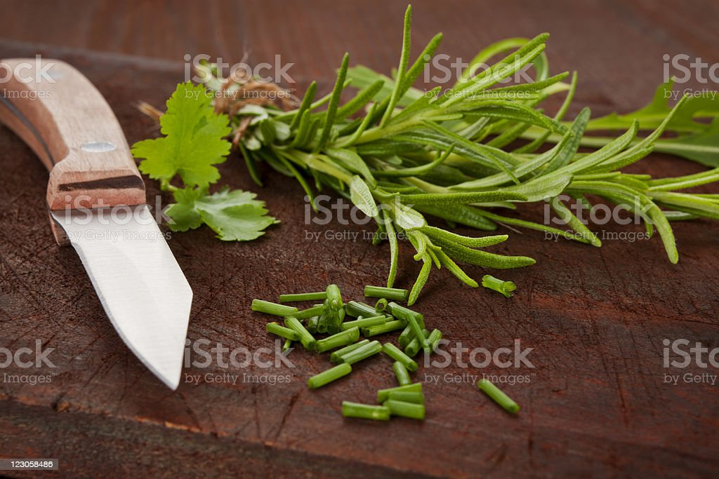 Culinary herbs collection royalty-free stock photo