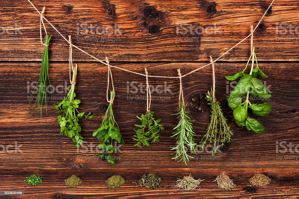 Culinary herbs. stock photo