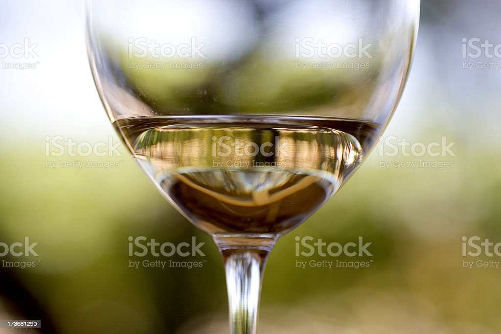 Culinary: White Wine Glass stock photo