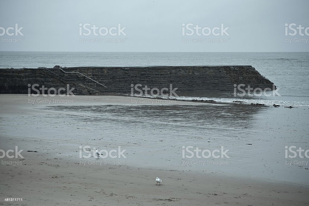 Cullercoats North Pier stock photo