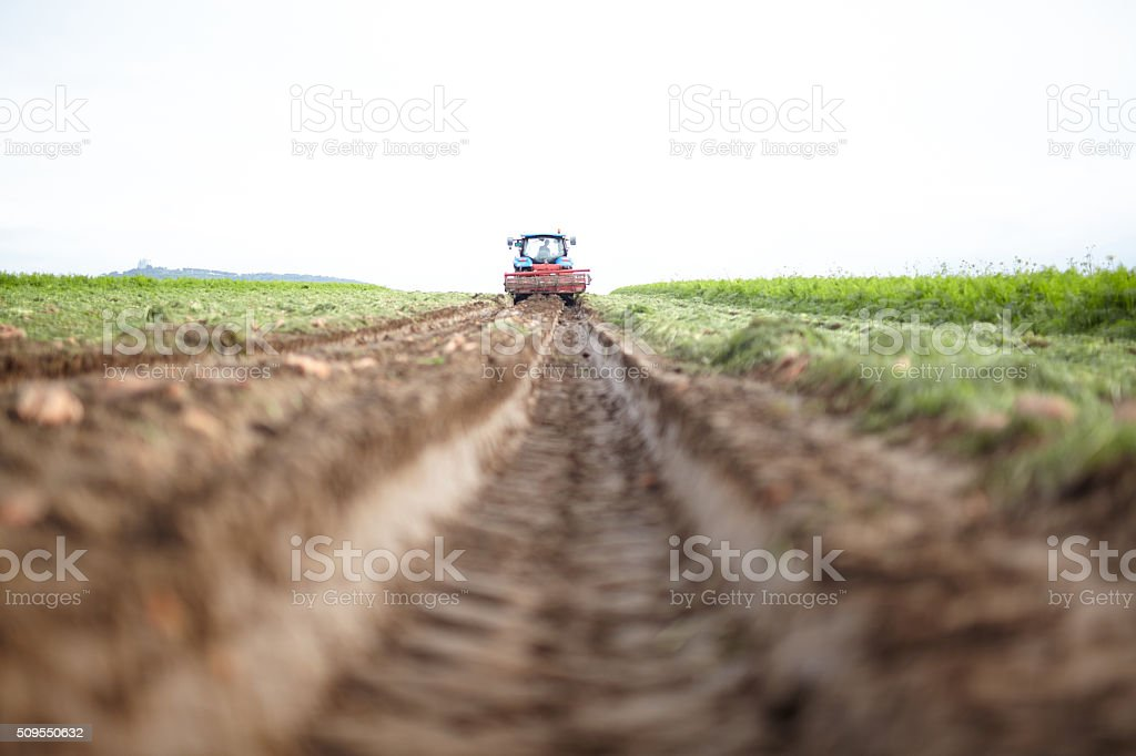 Cultivate a field stock photo