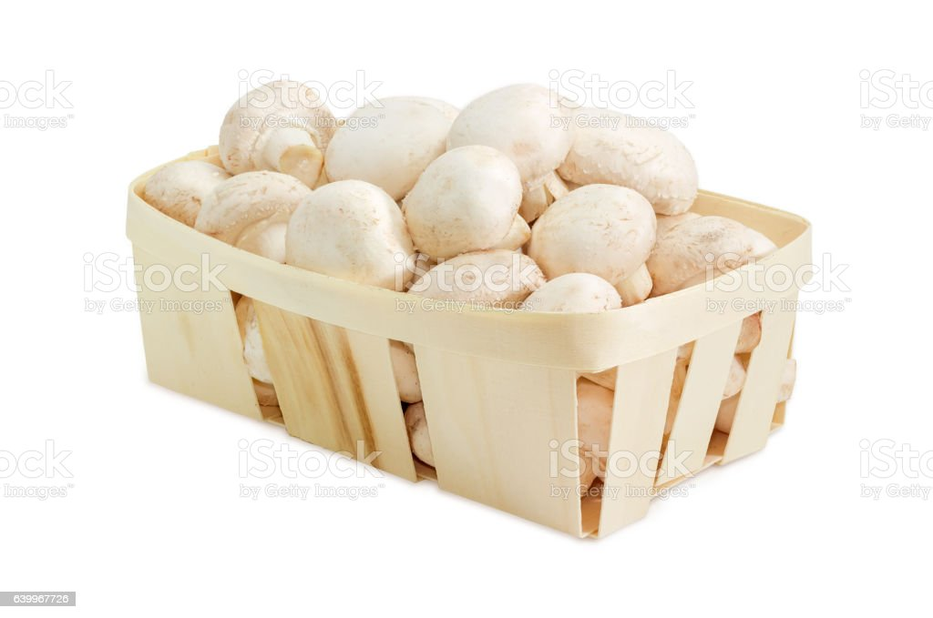Cultivated common button mushrooms in the wooden basket stock photo