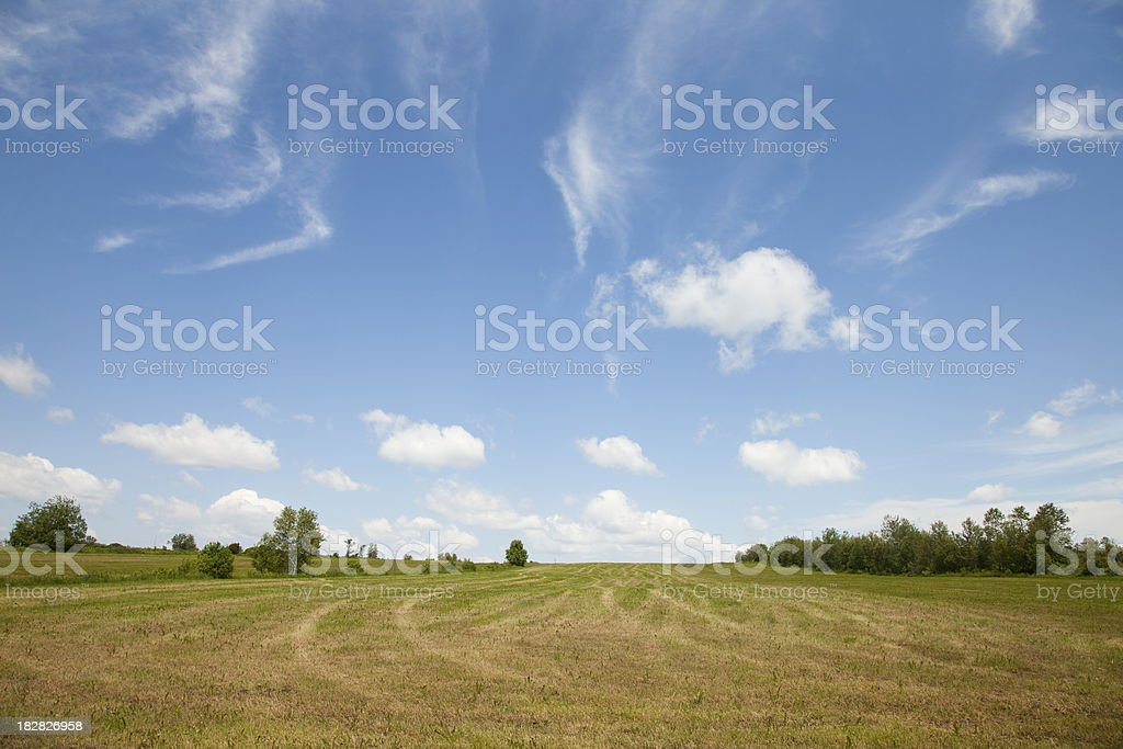 Cultivated field with blue sky stock photo