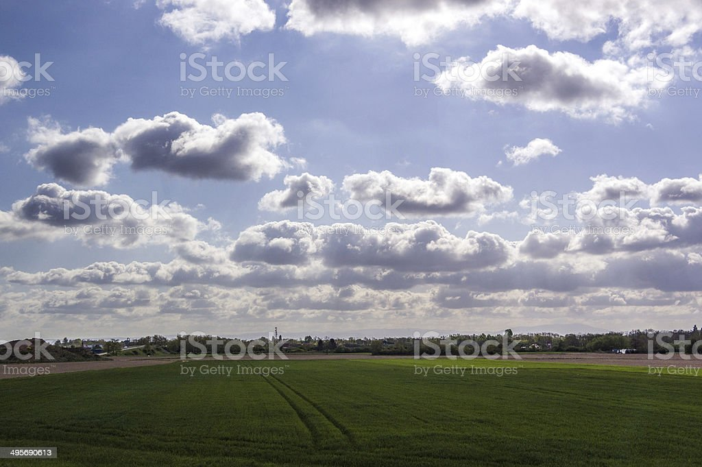 Cultivated field with cloudy sky stock photo