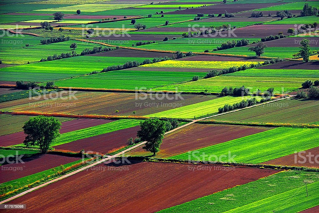 Cultivated fields from Above, Korinthos, Greece stock photo