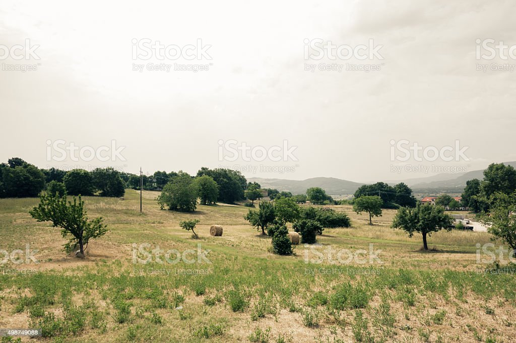 Cultivated Fields in Italy stock photo