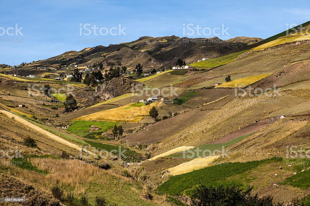 Cultivated hillsides around Zumbahua stock photo