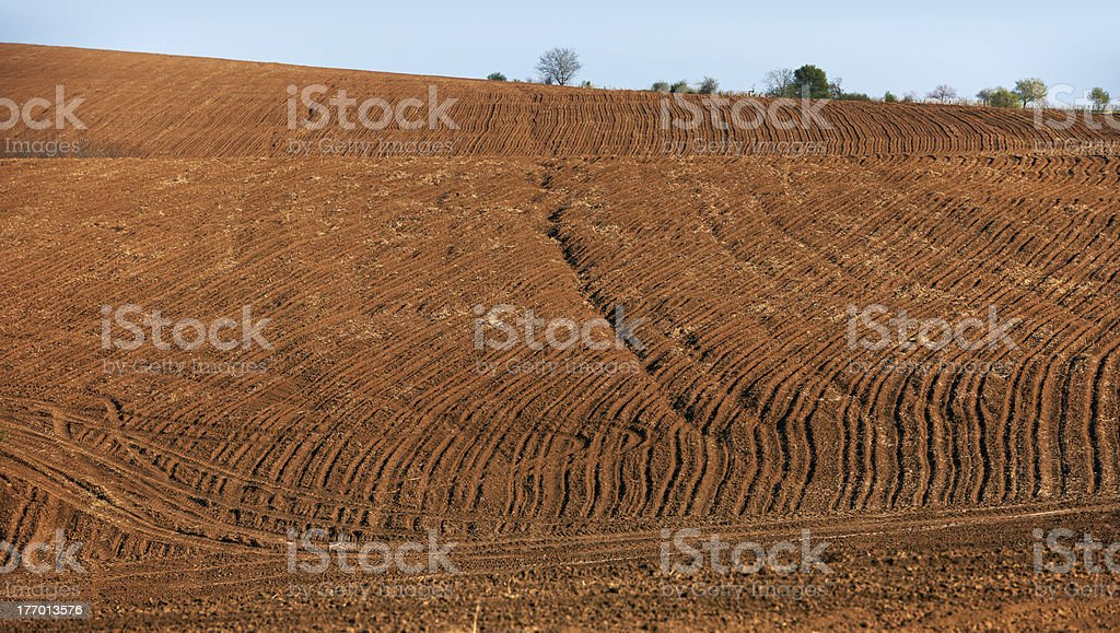 Cultivated land in Bulgaria stock photo