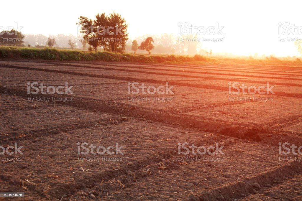 Cultivated land stock photo