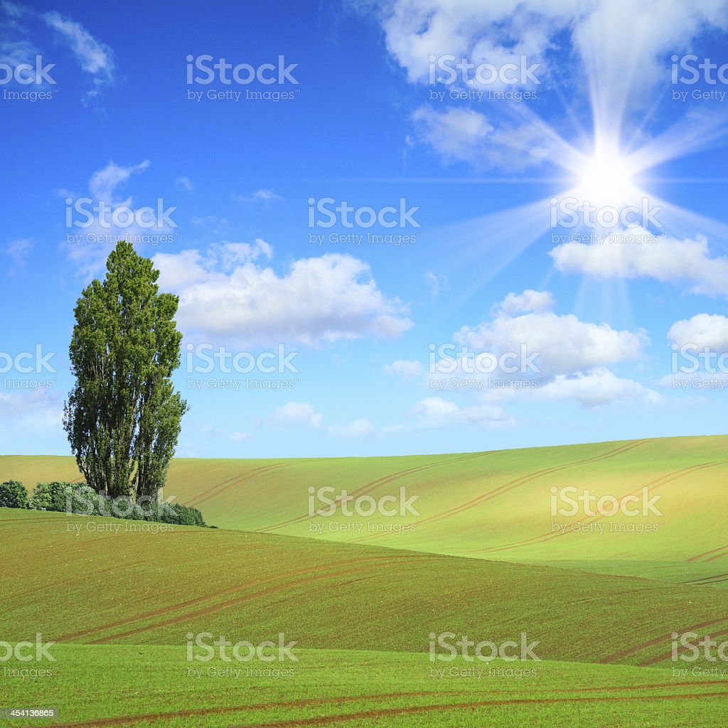 cultivated landscape royalty-free stock photo