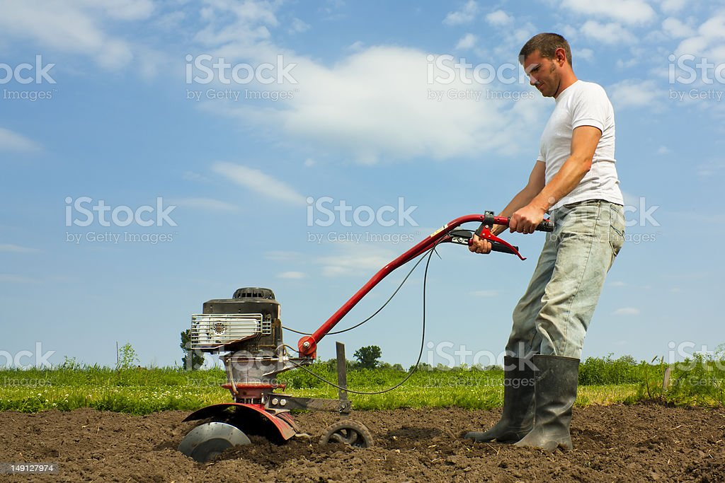 Cultivating stock photo