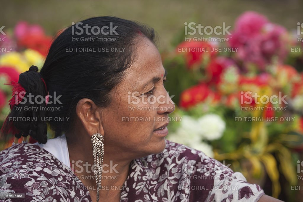 Cultural program - Elephant festival, Chitwan 2013, Nepal stock photo