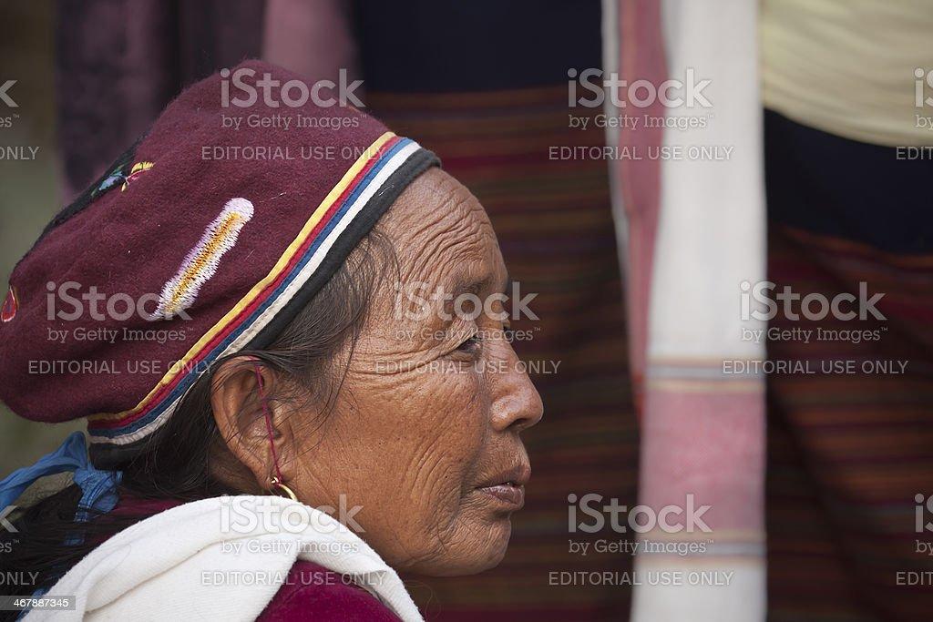 Cultural program - Elephant festival, Chitwan 2013, Nepal stock photo