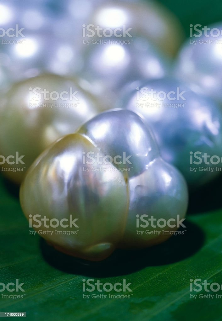 Cultured Pearls. stock photo