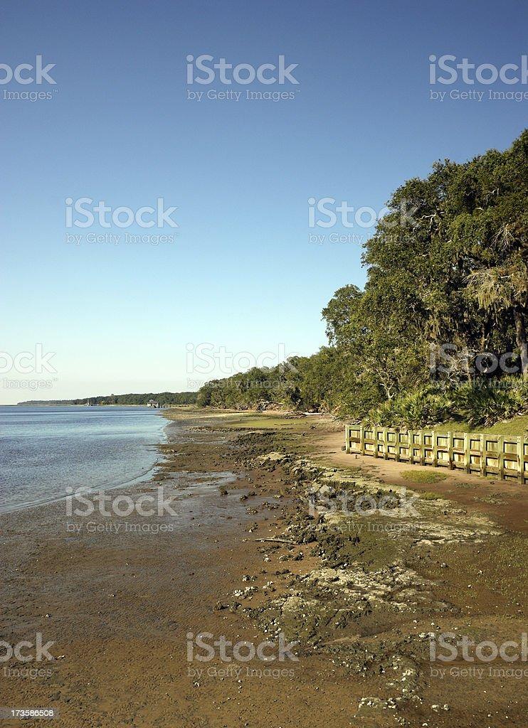 Cumberland Island Wilderness Georgia USA royalty-free stock photo