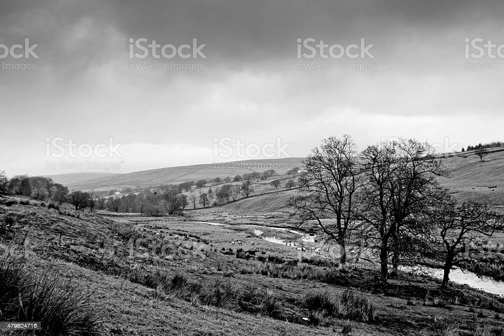 Cumbrian countryside stock photo
