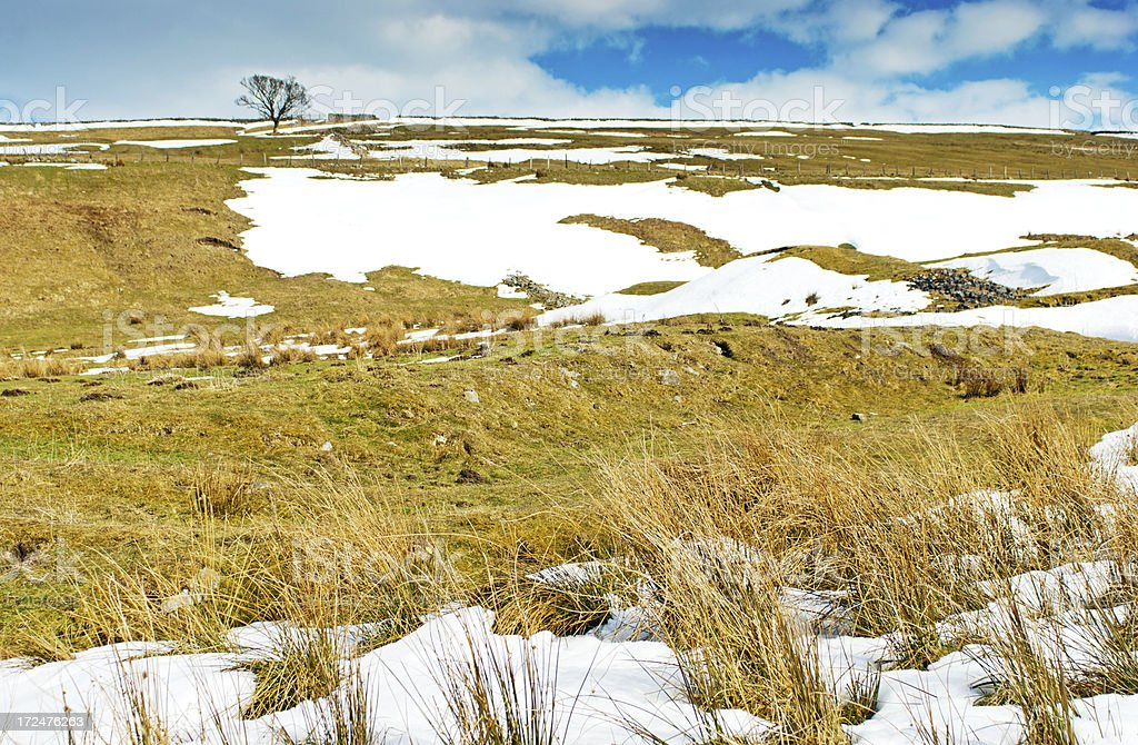 Cumbrian snow covered hillside royalty-free stock photo