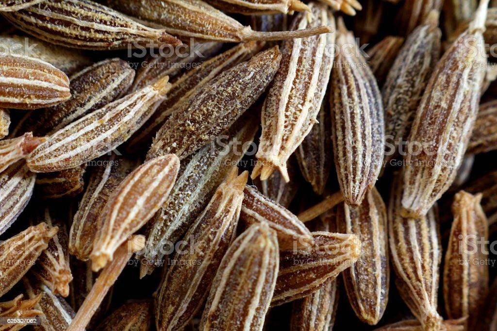 cumin seed closeup stock photo