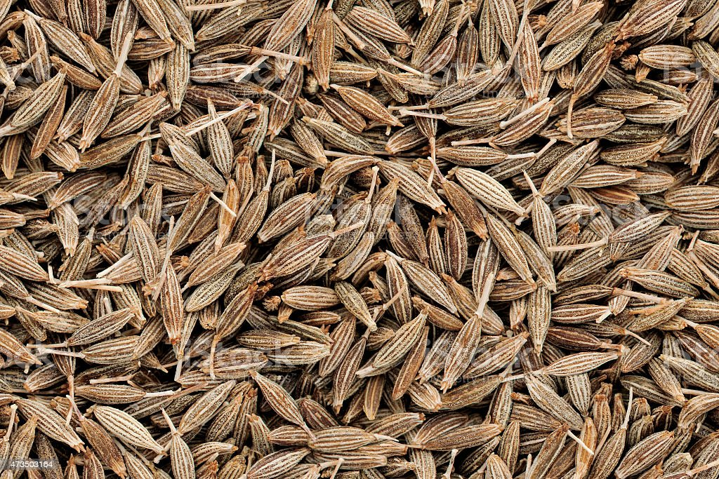 Cumin Seeds Seamless Texture stock photo