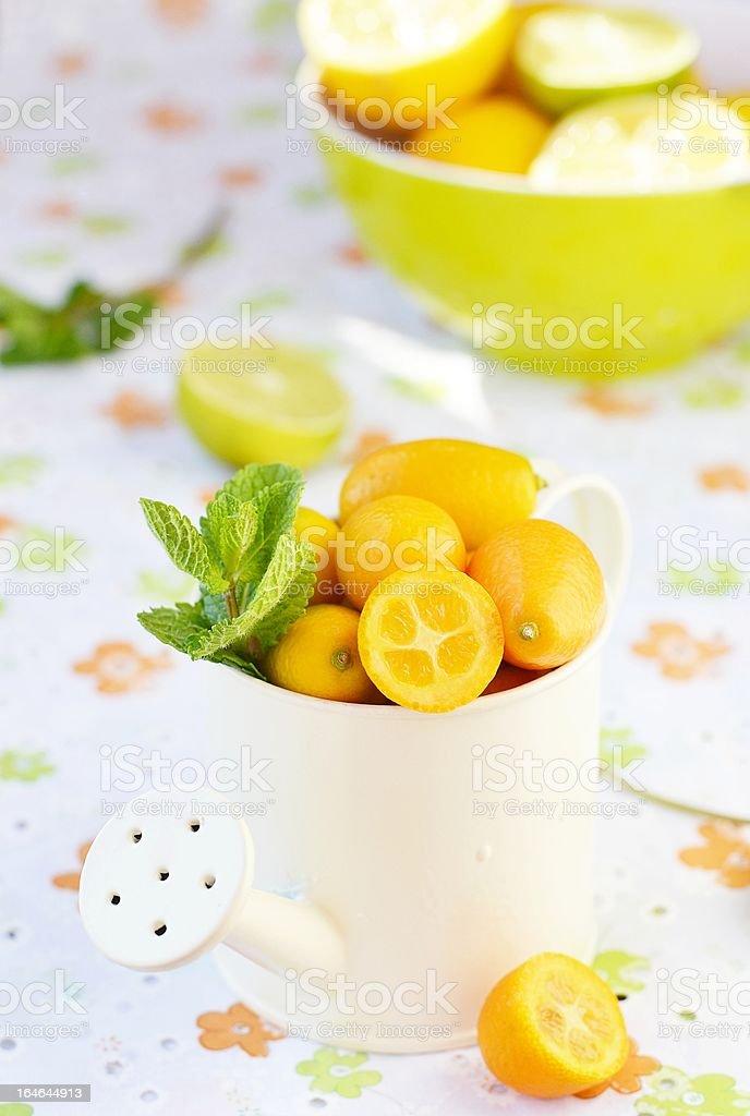 cumquats royalty-free stock photo