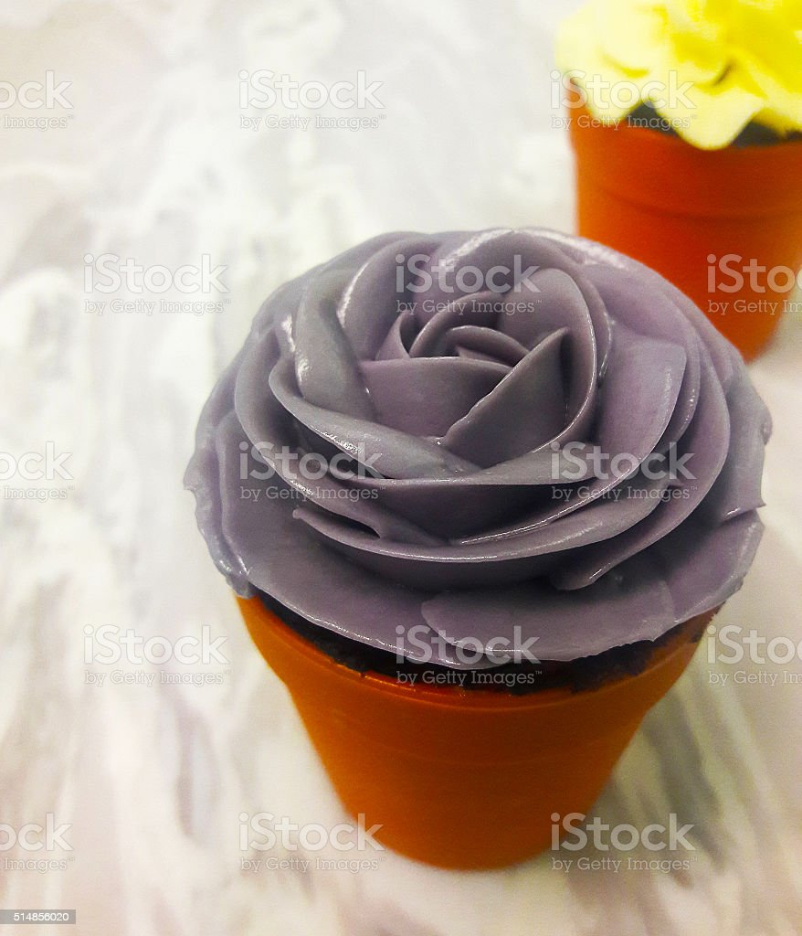 Tasse Kuchen Lizenzfreies stock-foto