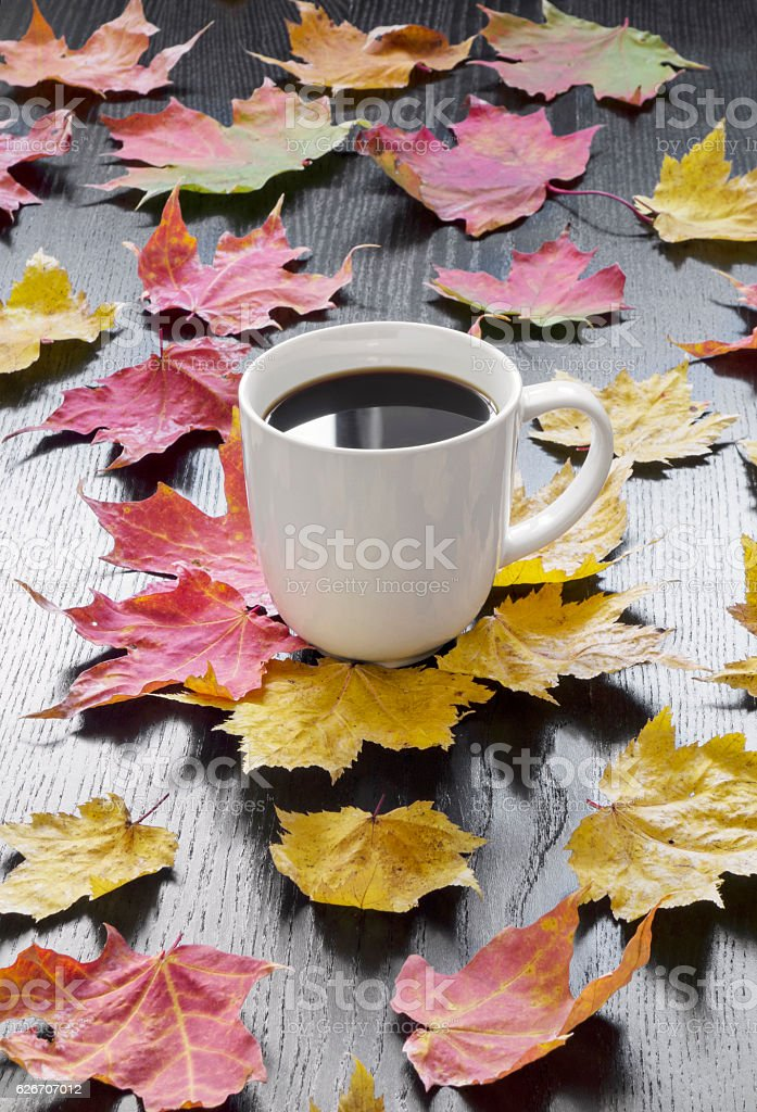Cup coffee and autumn leaves stock photo