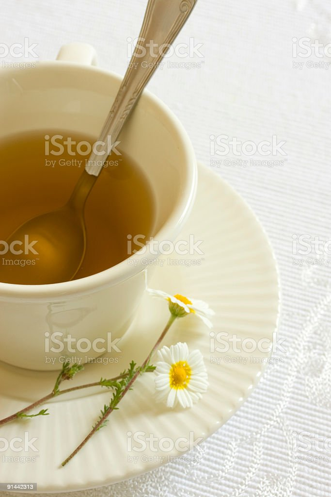cup of chamomile tea royalty-free stock photo