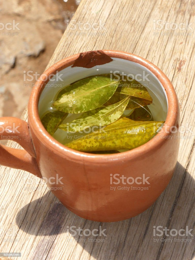 Cup of coca tea on wooden bench stock photo