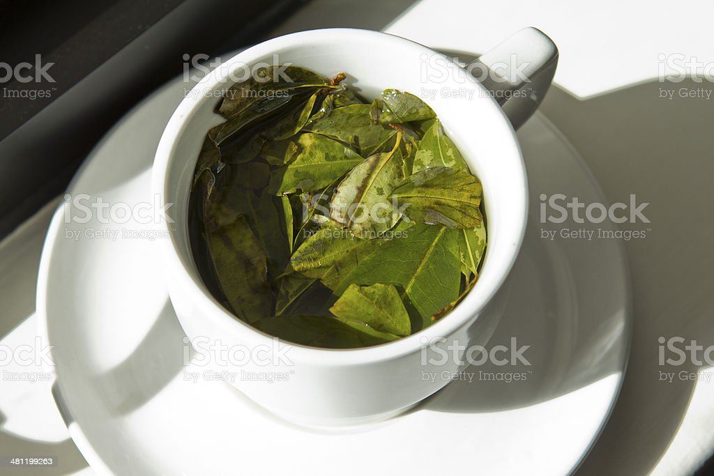 cup of coca tea stock photo