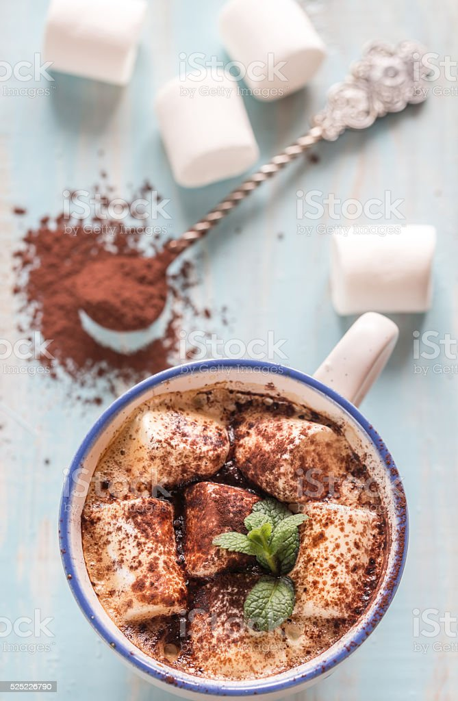 Cup of cocoa with marshmallows and cocoa powder stock photo