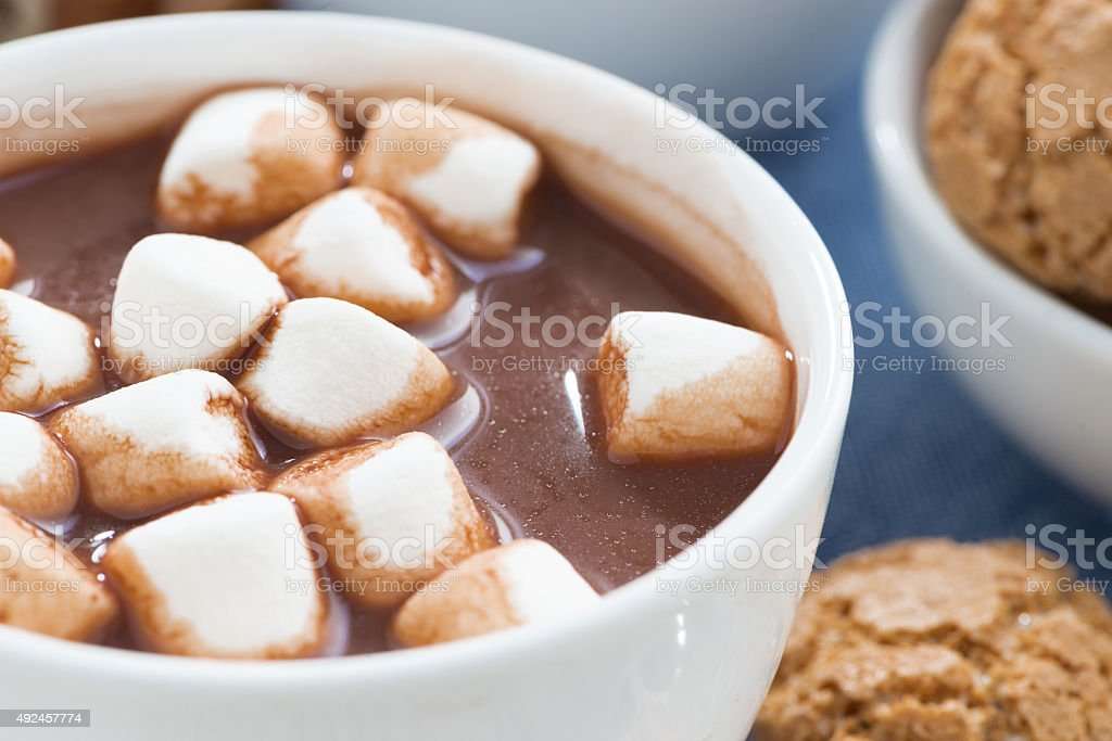 cup of cocoa with marshmallows, selective focus stock photo