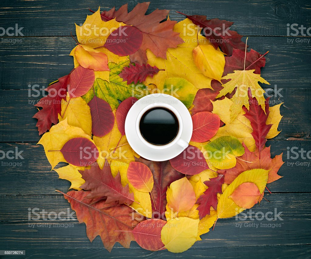 Cup of coffee and autumn leaves over dark wooden background stock photo