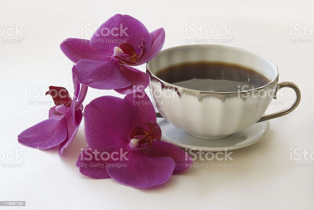 cup of coffee and purple orchid royalty-free stock photo