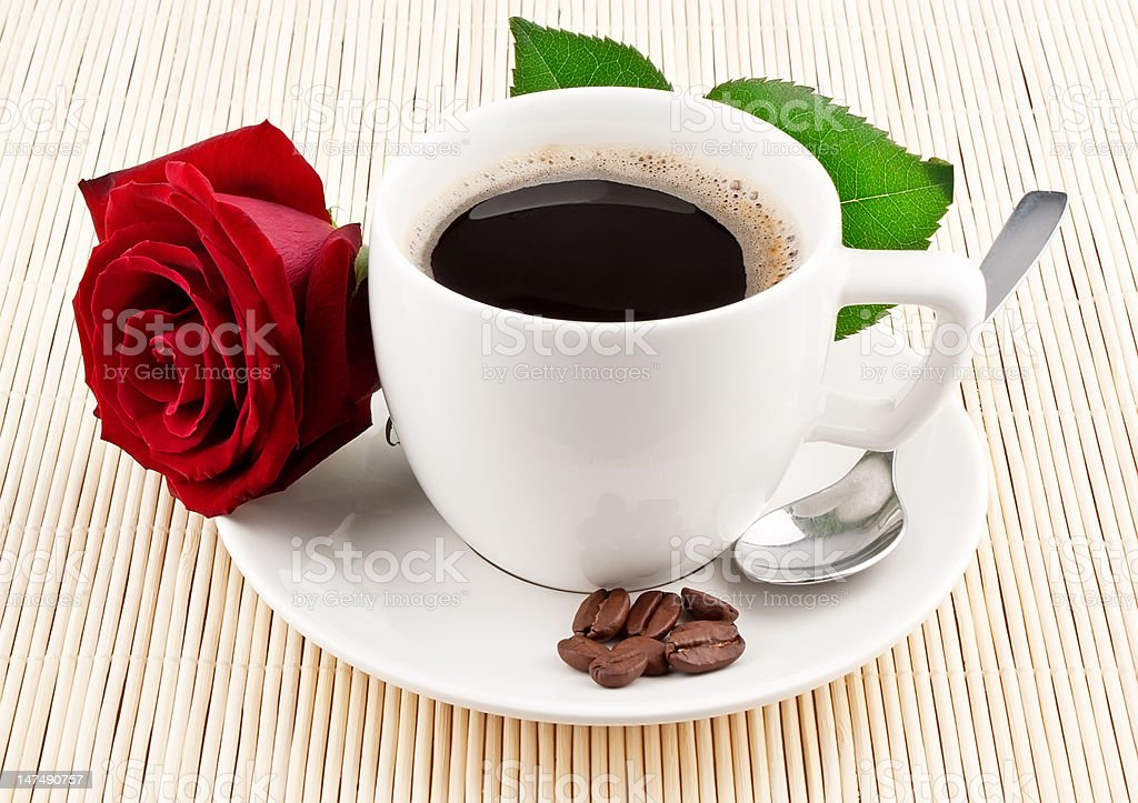 Cup of coffee and red rose royalty-free stock photo