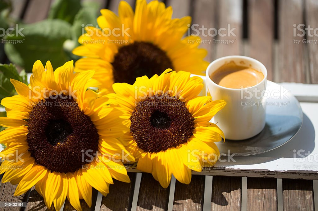 cup of coffee / espresso with sunflowers on garden table stock photo