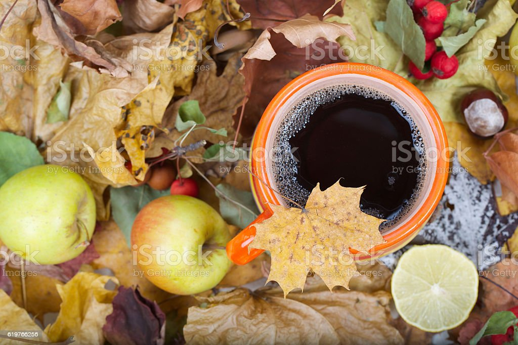 Cup of fall tea stock photo