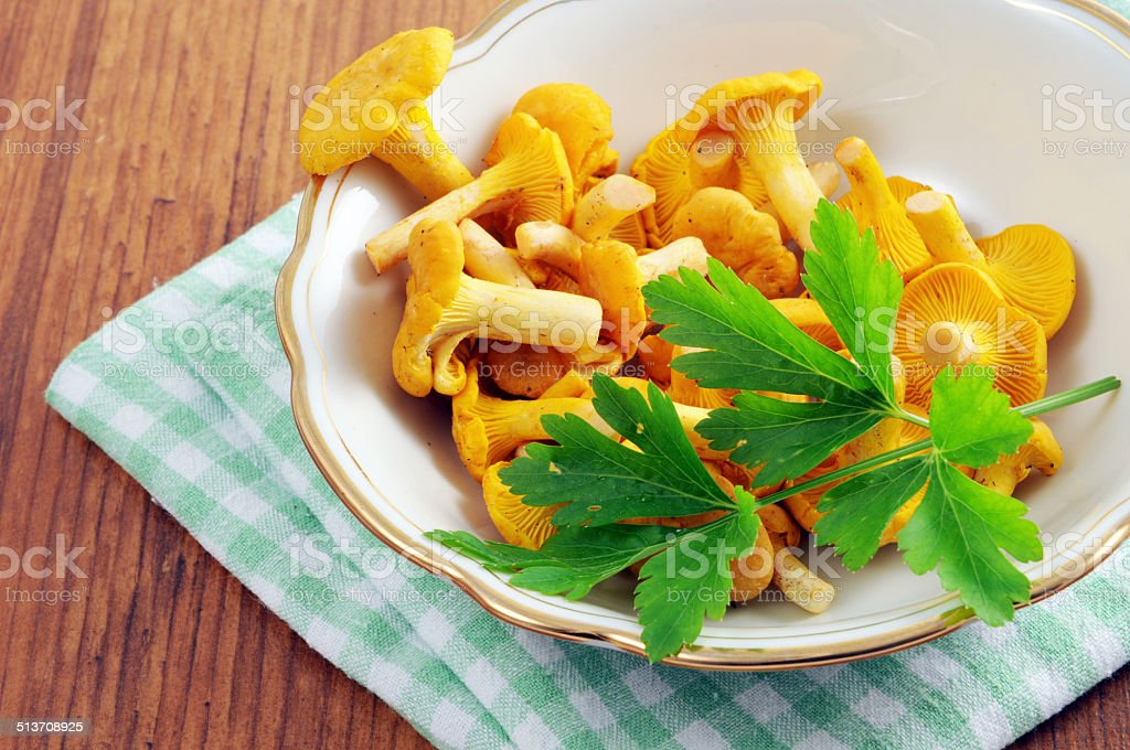 cup of golden chanterelle mushroom (Cantharellus cibarius) stock photo