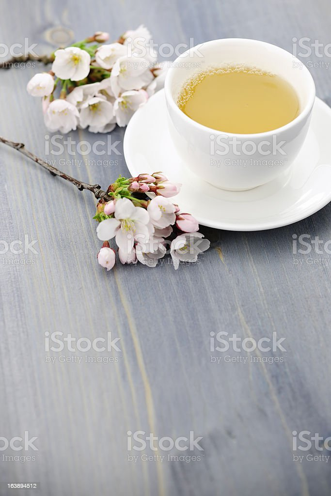 Cup of green tea and japanese cherry blossom royalty-free stock photo