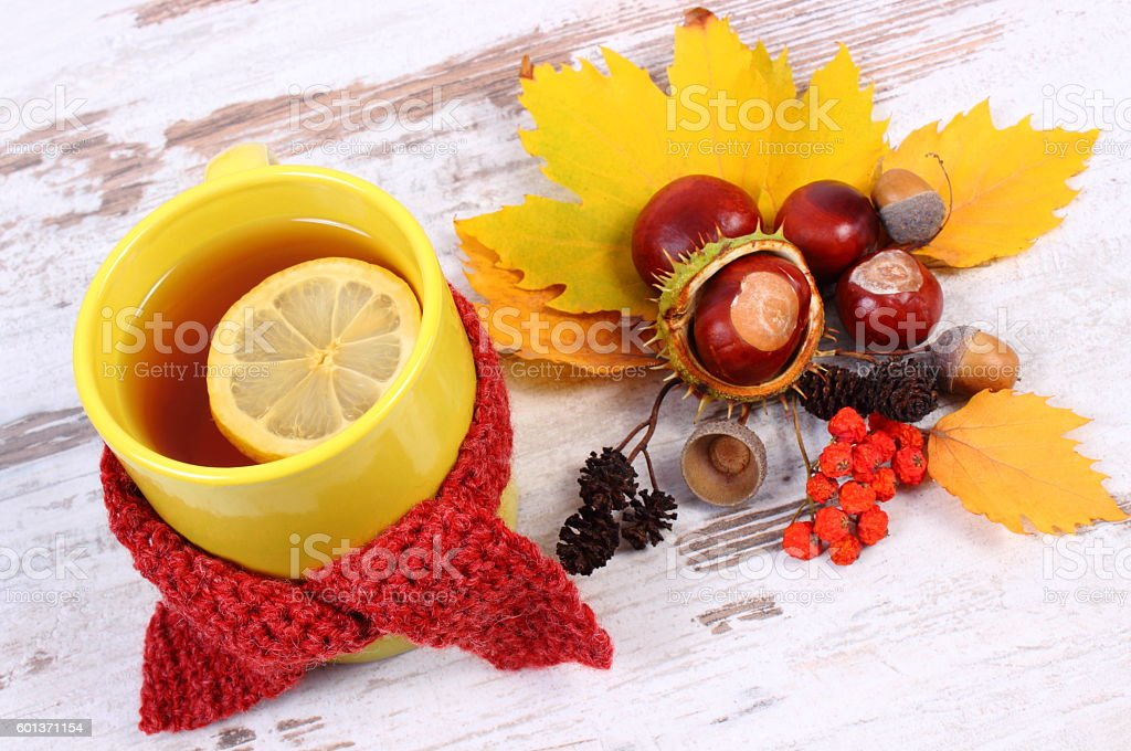 Cup of hot tea with lemon wrapped woolen scarf stock photo