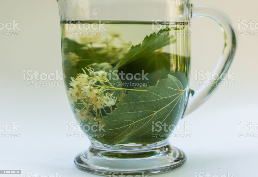 cup of linden herbal tea infusion stock photo