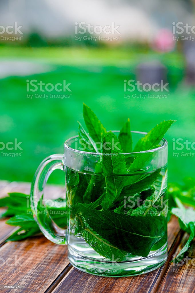 cup of mint tea on  wooden background, closeup. Herbal stock photo