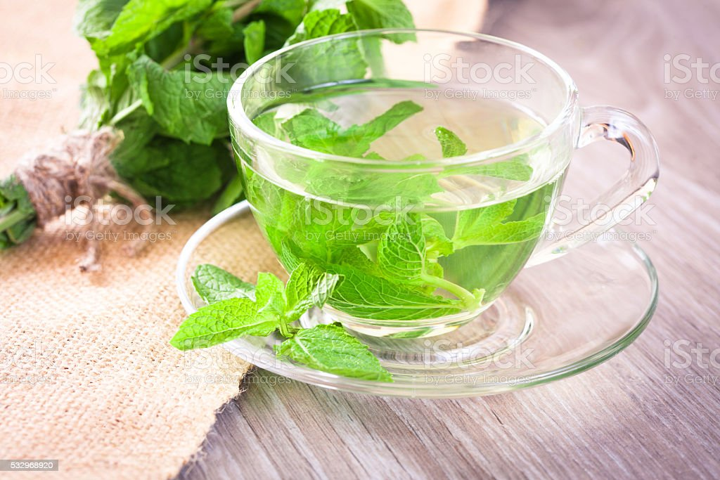 Cup of mint tea stock photo