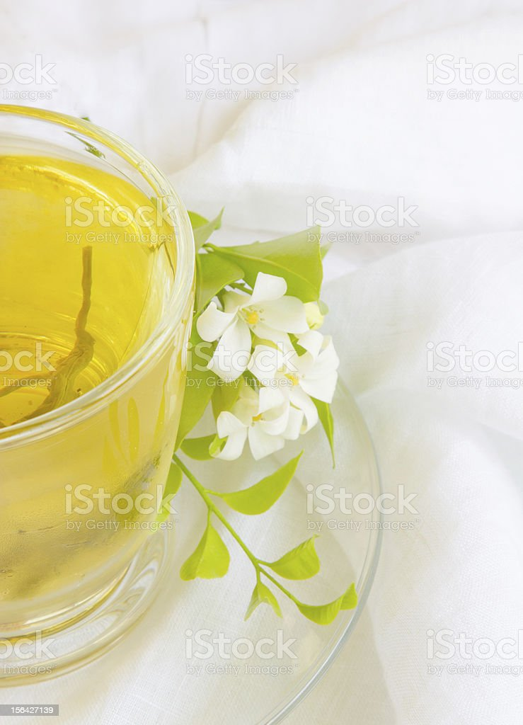 cup of olong tea royalty-free stock photo
