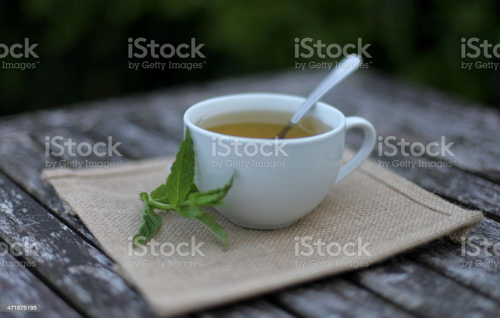 cup of peppermint royalty-free stock photo