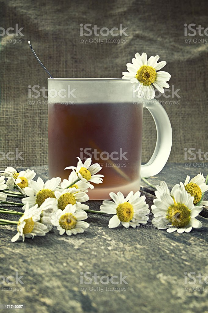 Cup of tea and chamomile flowers royalty-free stock photo