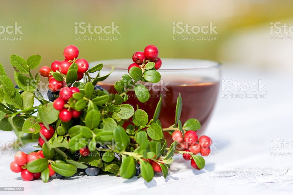 Cup of tea, cranberries and blueberries. Selective focus stock photo